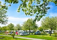 Campsite-Wirthshof - Markdorf