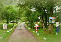 Campsite Red Squirrel - Glencoe