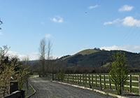Maesmawr Farm Resort - Newtown