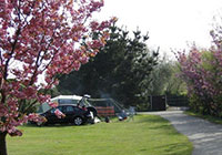 Wicks Farm Camping Park - Chichester