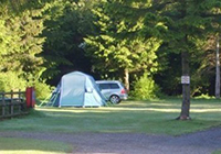 Forest Glade Holiday Park - Cullompton