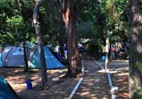 Aire-Naturelle-de-Camping-Balanea - Ile Rousse, L'-