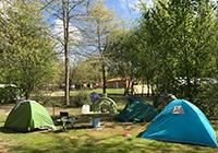 Camping-les-Rives-de-Grand-Lieu - St. Philbert de Grand Lieu