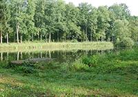 Camping-Orée-Forêt-de-la-Reine - Mandres aux Quatre Tours