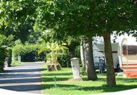Campsite-les-Rives-de-la-Doller - Masevaux