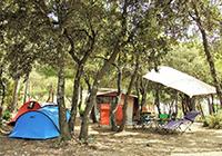 Camping-les-Chalottes - Murs