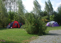 Camping-la-Clé-des-Champs-** - Luçon