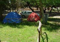 Campsite-Internazionale-Castelfusano - Roma