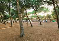 Torre del Porticciolo Villaggio-Camping - Alghero (Sassari)