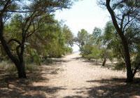 Camping Village Orri - Tortoli