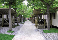 Camping Riccione - Riccione