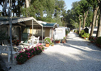 Campsite Italia - Marina di Massa