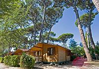 Campsite-Bosco-Verde - Torre del Lago  Viareggio (LU)