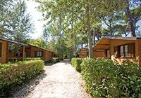 Campsite Bosco Verde - Torre del Lago  Viareggio (LU)