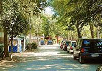 Campsite Village International St.Michael - Pisa