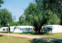 Camping Village Parco Degli Ulivi - Peschici