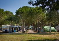 Campsite Village Mareblu - Cecina