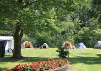 Campsite Blaauw - St.Nicolaasga