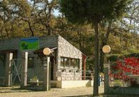 Campismo Quinta do Rebentao - Chaves