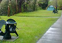 Beech Grove Caravan + Camping Park - Killarney, Co. Kerry