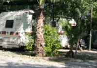 Camping International las Palmeras - Crevillente