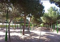 Camping-la-Plana - Creixell - Tarragona