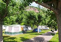 Camping-la-Borda-de-Arnaldet - Sesue