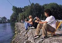 Campsite des Pêches - Le Landeron