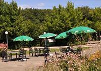 Campsite Bois de Bay - Genève - Satigny
